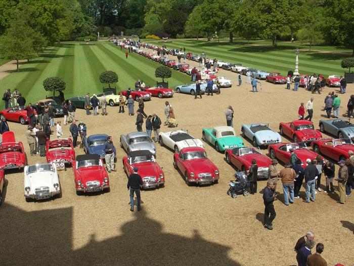 Over View of the collection 142 cars