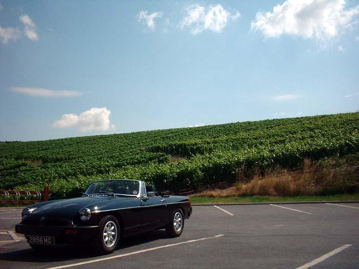 Next to the Champagne vineyards between Epernay and Troyes